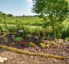 garden 2 May 27
